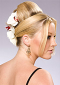 Popular Bridal Hairstyles For Today's Woman